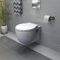Wall Mounted Water Closet