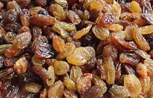A Malayar Raisins