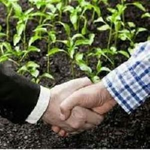 Contract Farming Services