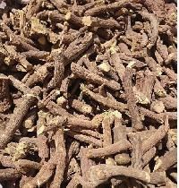 Licorice Roots Elite Hand Selected