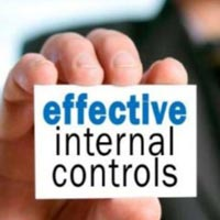 Internal Financial Control Services