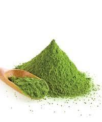 Refined Organic Green Tea Extract Powder