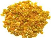 Aditya - Raisin Golden Superior ( Deeping )