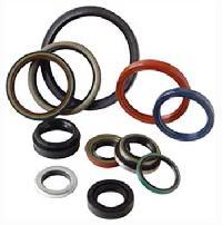 Sealing Ring - 01