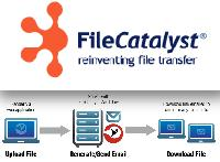 Transcoder & File Transfer File Catalyst