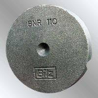 Cast Iron Casting (BNR-110)