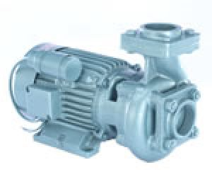 Centrifugal Monoblock Pumps