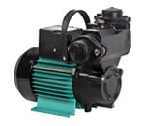 Self Priming Peripheral Pumps