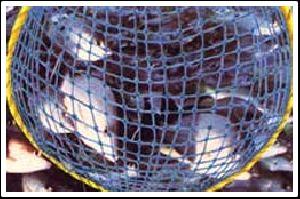Garware Fish Nettings
