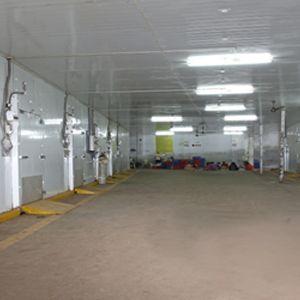 Ripening Chamber