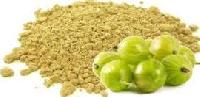 Dehydrated Amla Powder