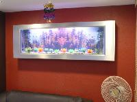 Wall Mounted Photo Frame Aquariums
