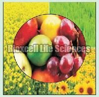 Bio-nitrix Bio Fertilizer