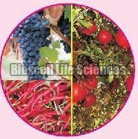 Bixovit Bio Fertilizer