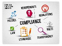 Company Audit And Tax Service