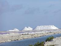 Crushed Sea Salt