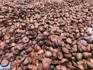 Best Half Betel Nuts