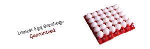 Commercial Plastic Egg Trays