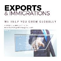 Business Immigration Service