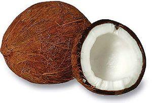 Spray Dried Coconut Powder