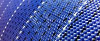 synthetic monofilament mesh fabric