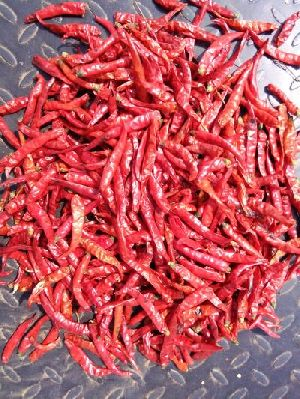 2070 Dried Red Chilli
