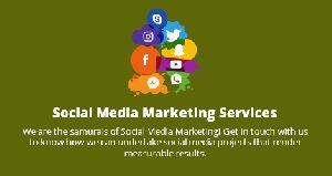 Social Media Promotion Services