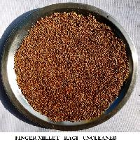 Red Millet - Finger Millet - Ragi