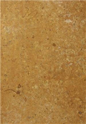 Jaisalmer Yellow Marble - Fossil