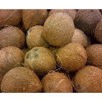Full Husked Coconut