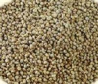 Cattle Seeds