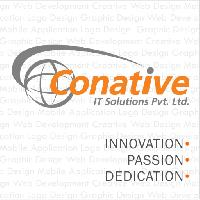 Software Development Service