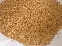 Hight Quality Sesame Seed