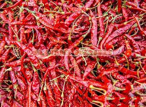 Byadgi Red Chilli