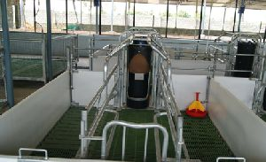Pig Farming Equipment