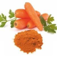 Carrot Powder