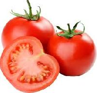 Padmini Hybrid Tomato Seeds
