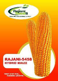 Rajani-5458 Hybrid Maize Seeds