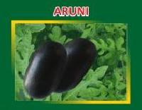 Aruni Hybrid Watermelon Seeds