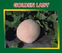 Golden Lady Hybrid Muskmelon Seeds