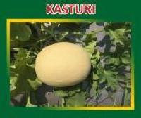 Kasturi Hybrid Muskmelon Seeds