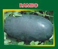 Rambo Hybrid Watermelon Seeds