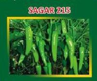 Sagar-215 Hybrid Green Chilli Seeds