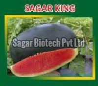 Sagar King Hybrid Watermelon Seeds