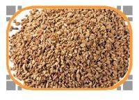 Parsley seed