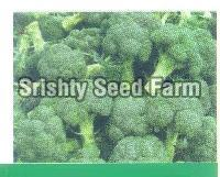 Green Broccoli Seeds