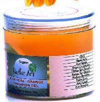 Organic Aloe Vera Orange & Cinnamon Gel (100 gms)