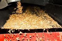 Grains Cleaning Services