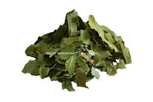 Dehydrated Neem Leaf
