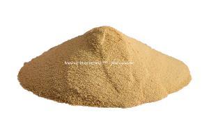 Dehydrated Raw Mango Powder